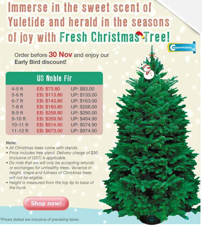 FAR EAST FLORA | Fresh Christmas Tree Early Bird Promo (now till 30 ...